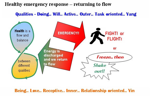emergency response flight fight or freeze shake out back to flow