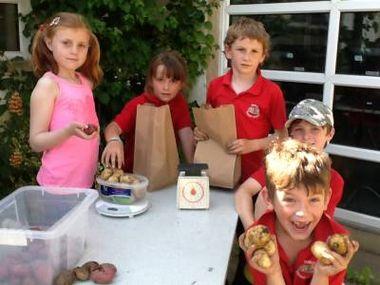 DE4 Food kids