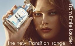 Estee Lauder/Transition Network