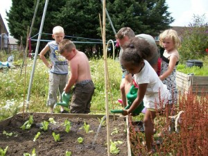 kids in an allotment