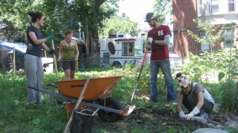 JP - Egleston Community Orchard