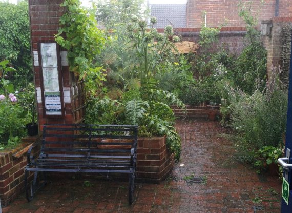 The garden flourishes, summer 2014: Mark Watson.