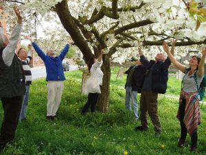 Throwing our arms up under the cherry trees, April 2014: Pic: Charlotte Du Cann.