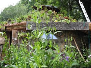 Permaculture house Glastonbury