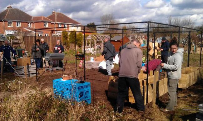 Transition Loughborough putting up a new fruit cage in their community garden.