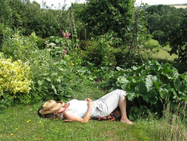 Sophy in the garden