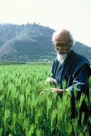 Mr Fukuoka on his farm