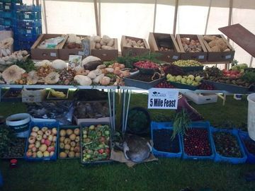 Foraging Stall at Nayland Festival 2010