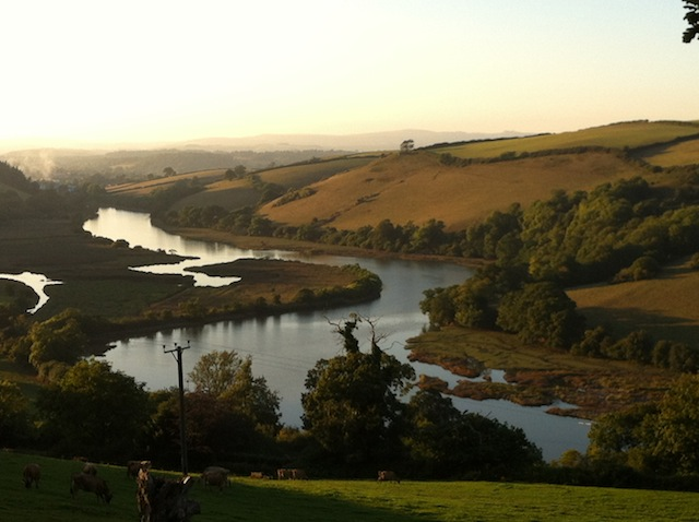 Looking up the Dart from Sharpham to Totnes