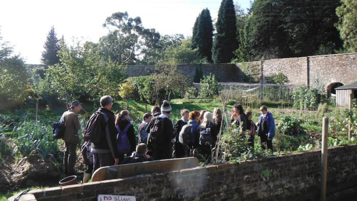 KEVICC students foraging for food in the walled garden