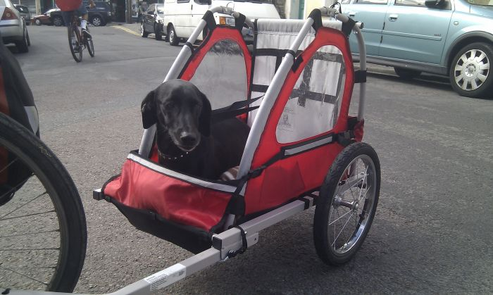 licorice in his cart