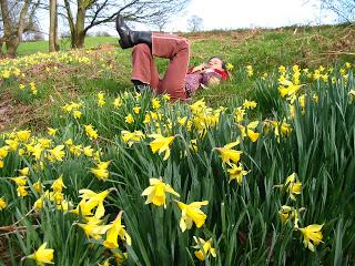 Charlotte in Daffodils