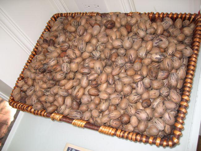 Pecan nuts aplenty.