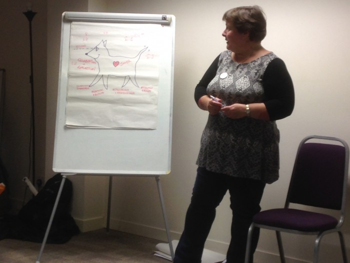 Sarah McAdam introduces the Transition Animal.