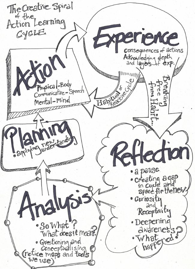 The Action Learning Cycle.