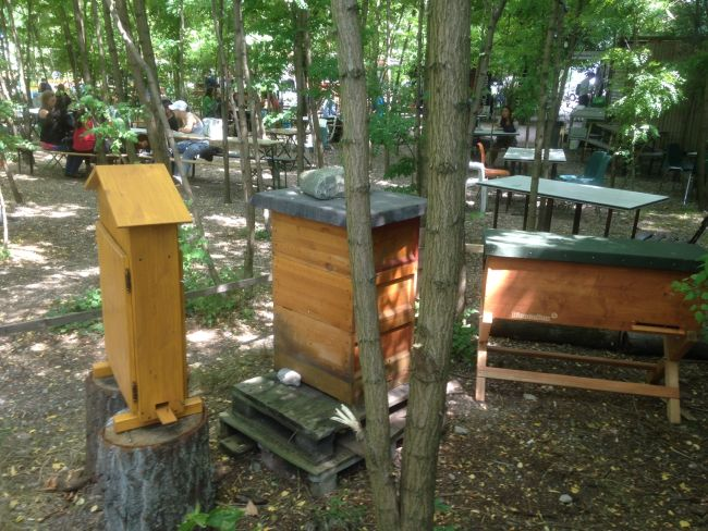 Beehives at Prinzessinnengarten, Berlin.