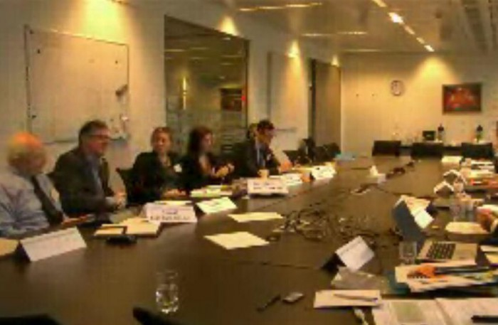 Filipa knitting during meeting in Brussels (sorry about quality, it's a screengrab from Skype).