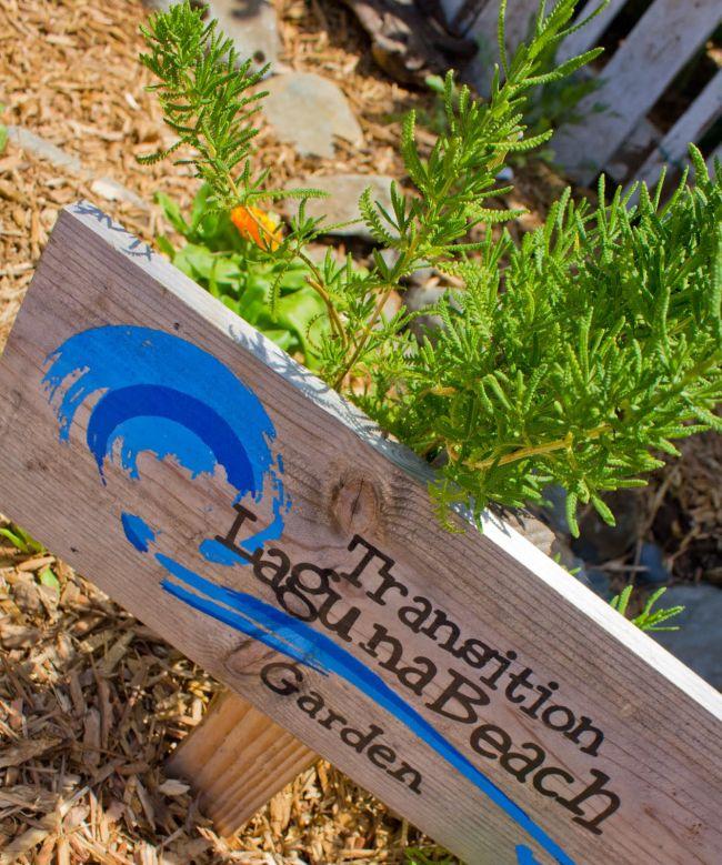 Transition Laguna Beach garden