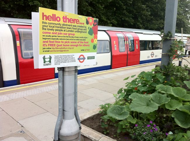 Transition Kensal to Kilburn's 'community allotment' on Kilburn underground station.  Photo: Chris Wells.