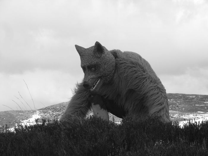 Wolf of Rannoch Moor, Scotland. Performance by Dougie Strang. Photo by Em Strang