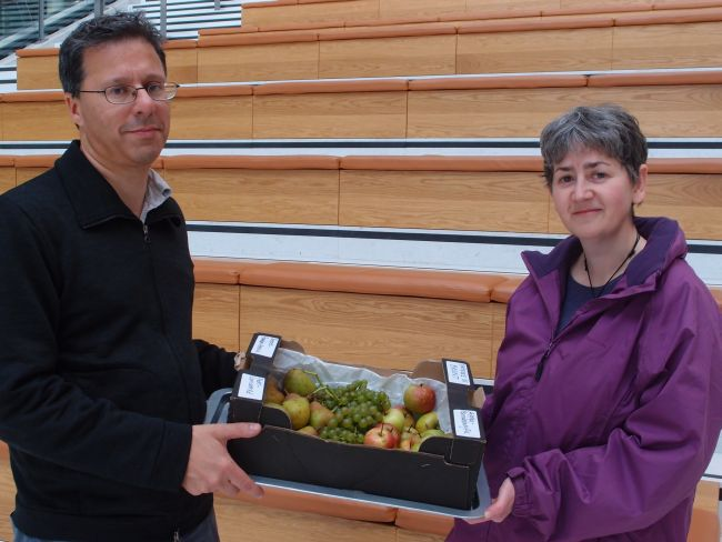 Michael Stuart & Viv Stein deliver Willesden fruit to Brent Civic Centre.  Credit: Vikash Mistry.