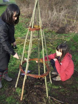 Increase your wellbeing by getting involved in the world around you - weaving local willow