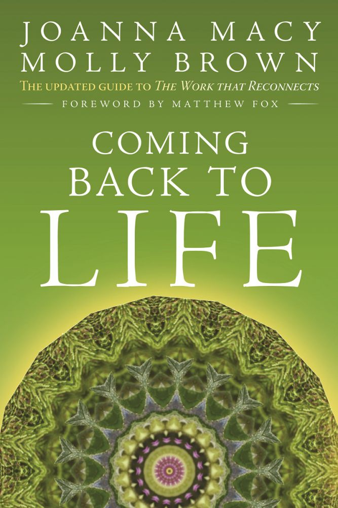 Coming back to life book by Joanna Macy