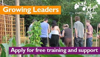 growing leaders programme